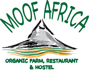 MoofAfrica